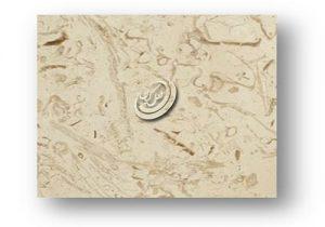انواع سنگ مرمریت پرطاووسی